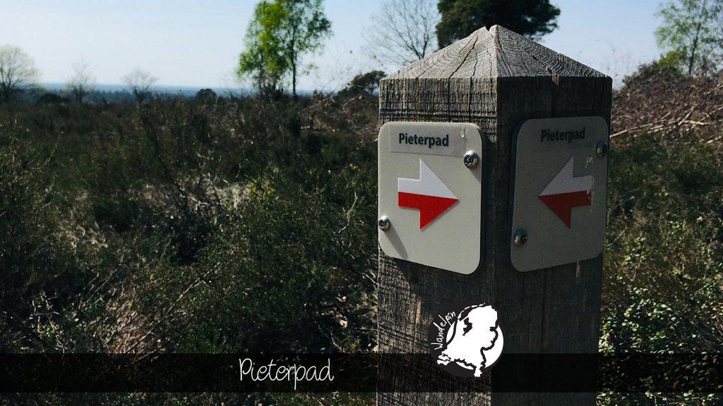 Wandelpin Pieterpad